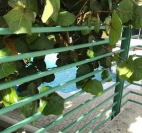 powder coat painted railing